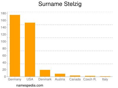 Familiennamen Stelzig
