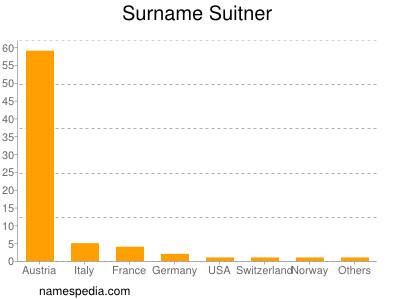 Surname Suitner