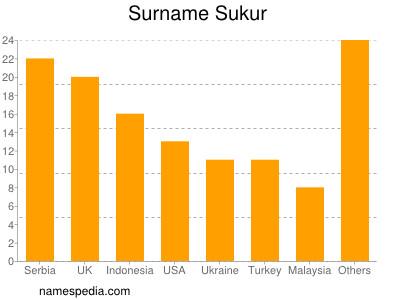 Familiennamen Sukur