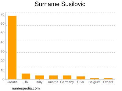 Surname Susilovic