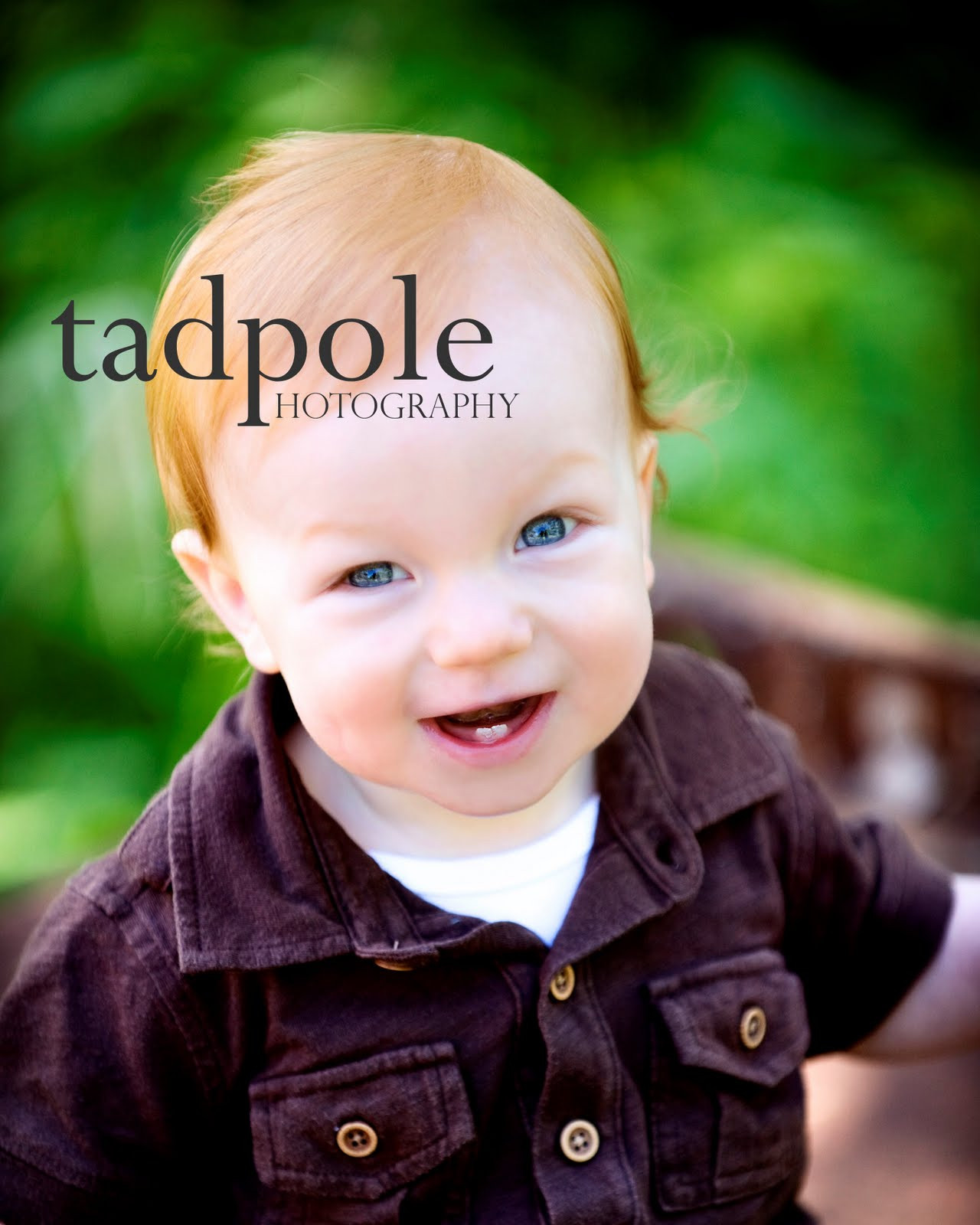 Tadpole_1