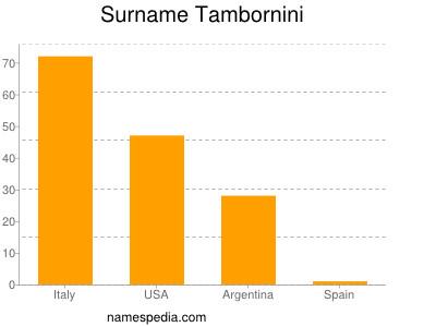 Surname Tambornini