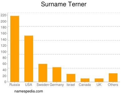 Surname Terner