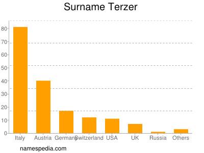 Surname Terzer