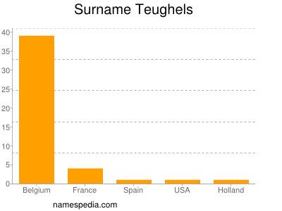Surname Teughels