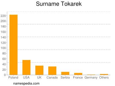 Surname Tokarek