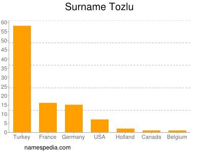 Surname Tozlu