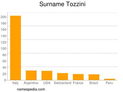 Surname Tozzini