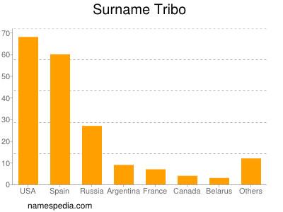 Surname Tribo