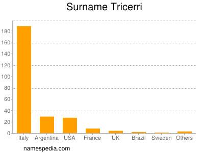 Surname Tricerri