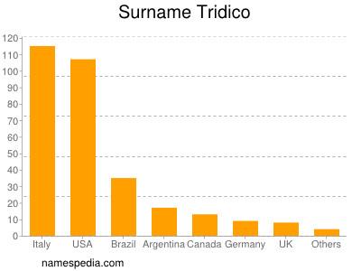Surname Tridico