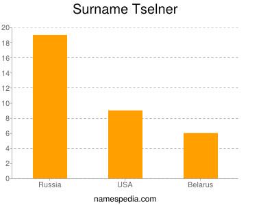 Surname Tselner