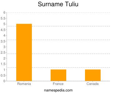Familiennamen Tuliu