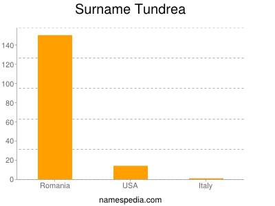 Surname Tundrea