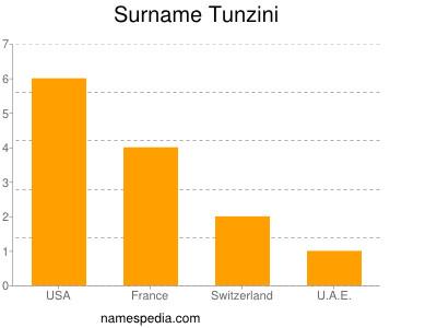 Surname Tunzini