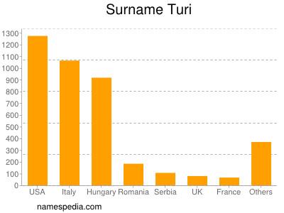 Surname Turi