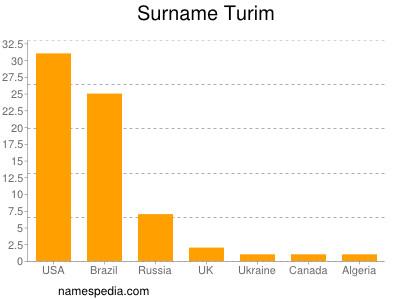 Surname Turim