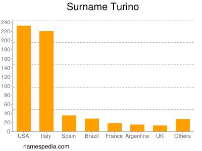 Surname Turino