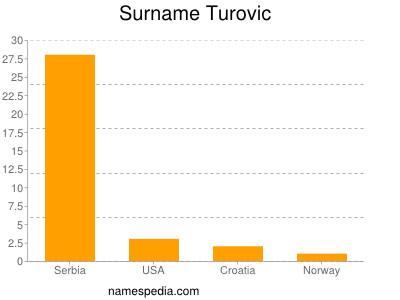 Familiennamen Turovic