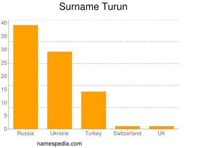 Surname Turun