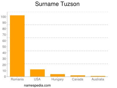Surname Tuzson