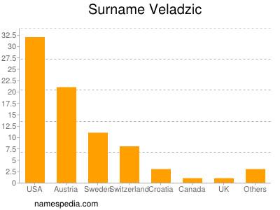 Surname Veladzic