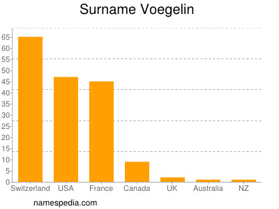Surname Voegelin