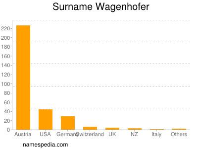 Surname Wagenhofer