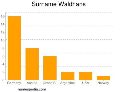 Surname Waldhans
