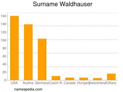 Familiennamen Waldhauser