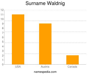 Surname Waldnig
