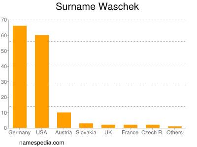 Surname Waschek