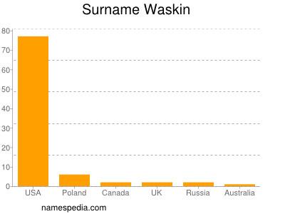 Surname Waskin