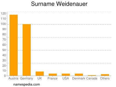Surname Weidenauer