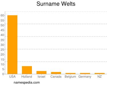Surname Welts