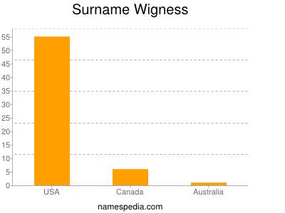 Surname Wigness