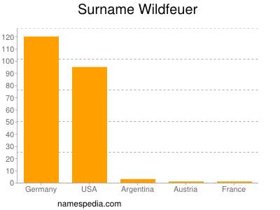 Surname Wildfeuer