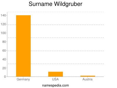 Surname Wildgruber