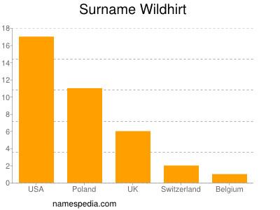 Surname Wildhirt