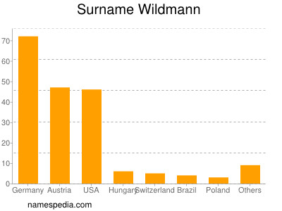 Surname Wildmann
