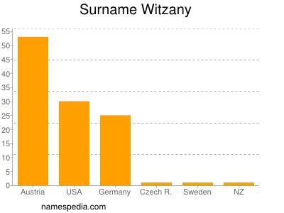 Surname Witzany
