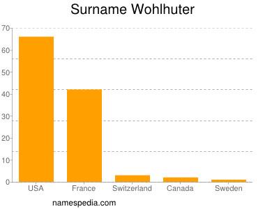 Surname Wohlhuter