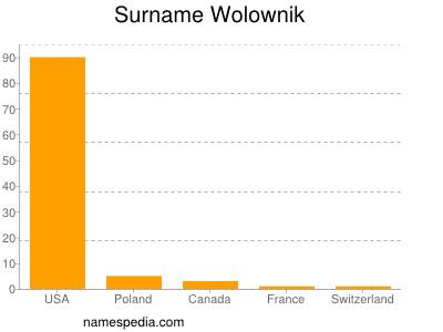 Surname Wolownik