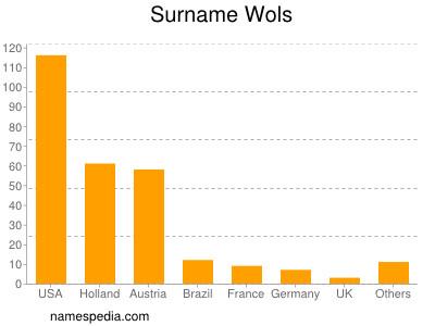 Surname Wols