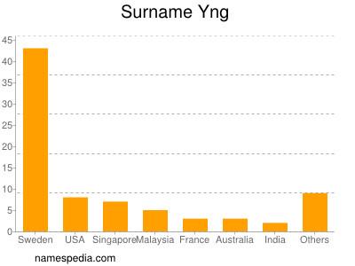 Surname Yng