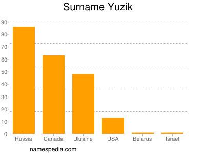 Surname Yuzik