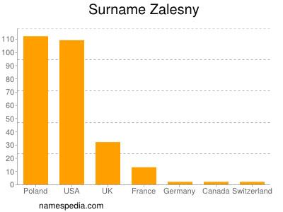 Surname Zalesny