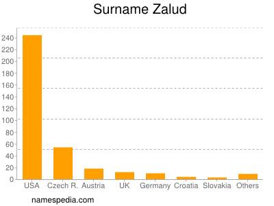 Surname Zalud