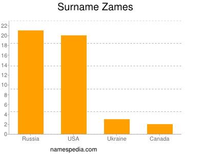 Surname Zames