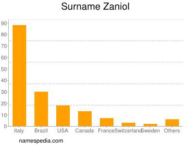 Surname Zaniol